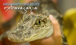 ms_wildlife_extravaganza1