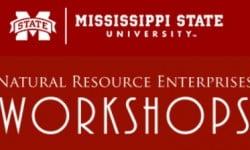 MSU Workshop