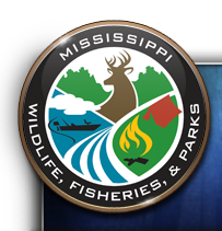 mdwfp announces fishing rodeos in philadelphia and grenada