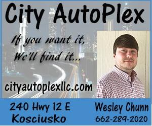 https://www.cityautoplexllc.com/